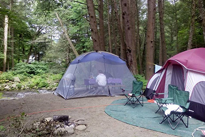 Russell Brook Campsites Tent Site